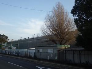 東野中学校5
